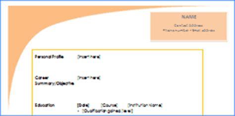 Consultant CV Template - Curriculum Vitae CV
